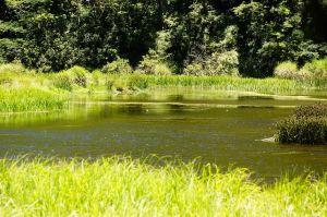 【南澳】幽湖秘境~神秘湖