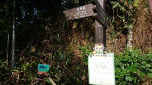 虎山溪+虎山山腰+虎山自然步道