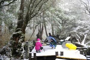 【宜蘭】0203 太平山 下雪了