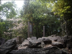 【台中】十文溪山、屋我尾山(麗陽線)