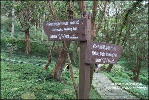 東眼山自導式步道