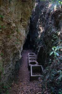南壽山-大猴洞-猩猩洞