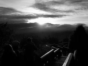 阿里山的黑白世界