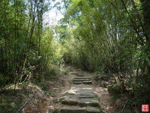 【台北市】清天宮連走向天池-面天山出二子坪