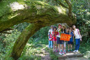 陽明山暑期兒童生態體驗營