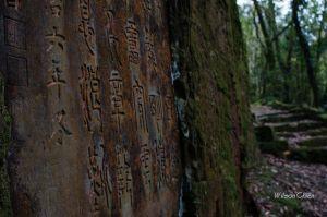 猴硐 金字碑古道與大粗坑古道O型