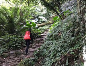 新溪州山環走石門壩槭林公園