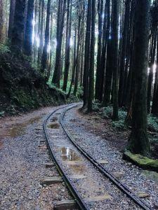 20180708-特富野古道