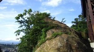 在都市叢林裡尋幽訪勝─景美仙跡岩