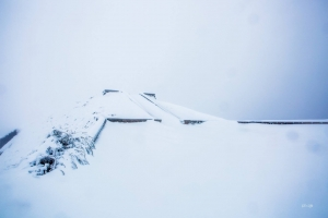 合歡山 雪地健行