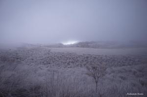 從擎天崗上翠翠谷-紅外線攝影