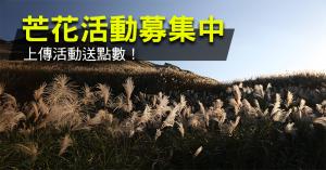 【活動】芒花活動大募集,上傳送點數!