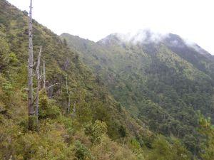 石瀑滾滾登玉山前峰~這輩子只會爬這一次
