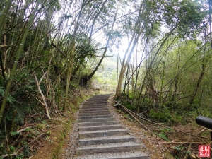 【桃園】小烏來舊水圳古道‧義興吊橋