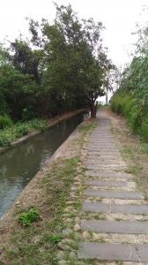 烏日-知高圳步道