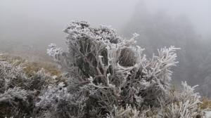 2018.02.02-03急凍的奇萊南峰