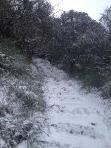 冰封七星山