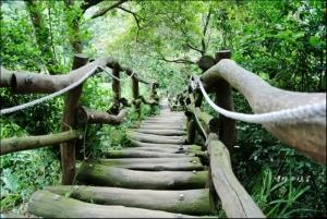 大坑二號步道爬爬走,健腿免驚,遜腳慎行