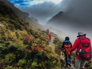 【山岳之美】在雨中前往嘉明湖的路上