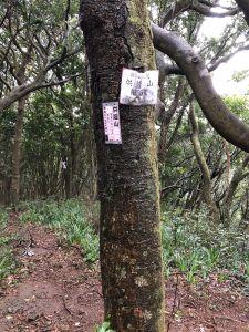 第4根台北縣政府採摘箭竹筍許可地段界柱