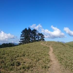 ¥步道小旅行¥合歡北峰
