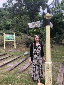 知本國家森林遊樂區午後一遊