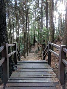 大雪山森林遊樂區之稍來山與木馬道