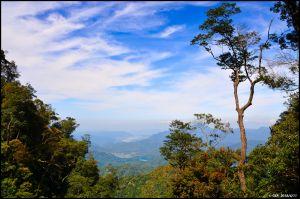 日月潭。翱翔 鷹的視野 ~ 水社大山