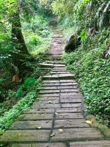 健行避暑美地 : 二尖山步道