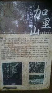20160404苗栗加里山(二坪山入口)