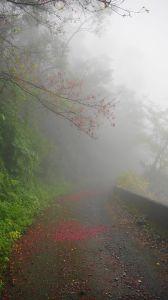 井步山(阿猴富士山)