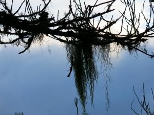 天使的眼淚~嘉明湖