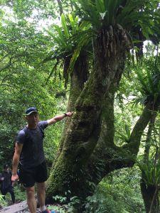 礁溪聖母山莊登山步道