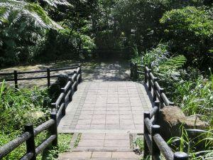 姜子寮山.泰安瀑布.鐵道公園