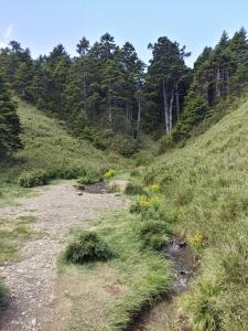 北峰~小溪營地.