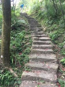內湖鯉魚山步道
