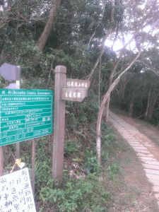 Enjoy-飛鳳山