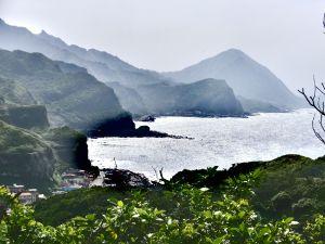東北角台灣野百合
