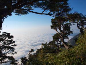 北大武一日行--從新登山口至三角點至新登山口