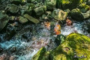 三光溪河谷