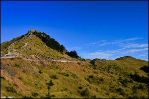 玉山杜鵑與奇萊群峰 @ 小奇萊步道
