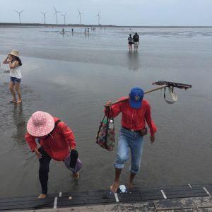 2018/06/21 高美濕地木棧道