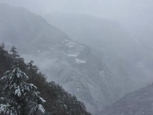 【環境】這場雪背後的意義?