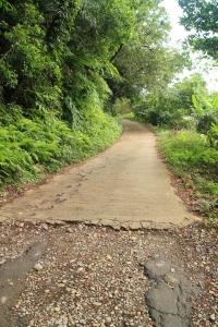 大溪石門登山步道 20161111