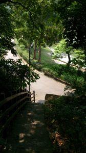 碧湖公園登山步道