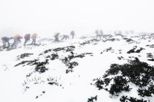 雪東線作品集