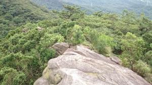 金明山+柯子林山(如意湖)