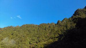 北橫第一高峰~巴博庫魯山O型走