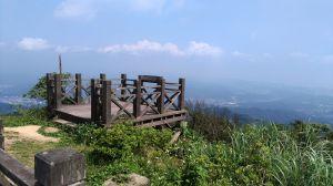 來去小百岳NO.011姜子寮山