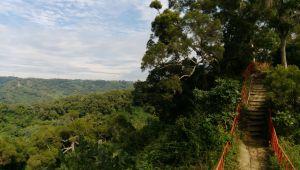 田中森林登山步道